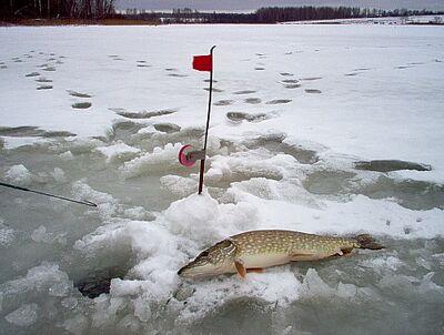 Рибалка на жерлицы взимку