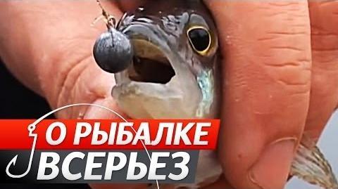 """Микроджиг. """"О Рыбалке Всерьез""""."""