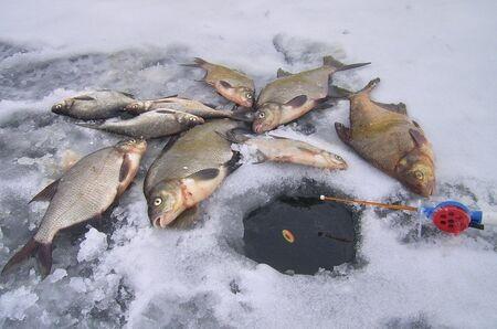 Зимова рибалка з поплавцем