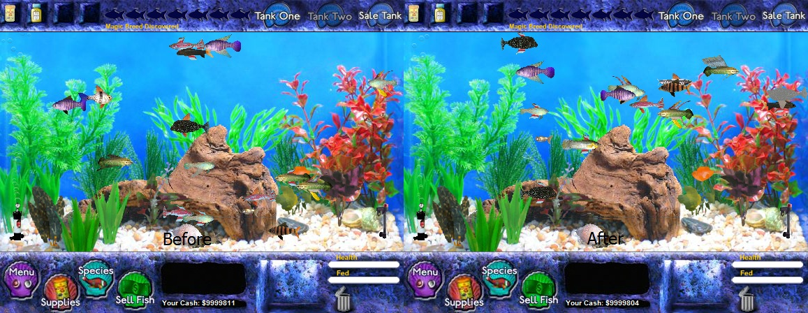 Image before after unusual fish tycoon for Fish tycoon 2