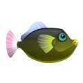 Pinktail Trigger (1).png