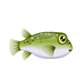 Pufferfish (1).png