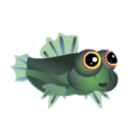 Scooter Blenny (2).png
