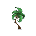 Tranquil Palm.png