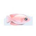 Kissing Fish (1).png