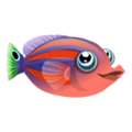 Six Line Wrasse (2).png