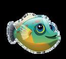 Orangehead Filefish