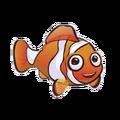 Percula Clownfish (2).png