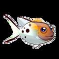 Lyretail Hogfish (2).png