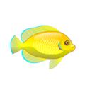 Lemonpeel Damsel (1).png