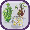 Pond Gardener