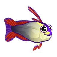 File:Purple Firefish (2).png