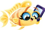 Adult Gossip Fish