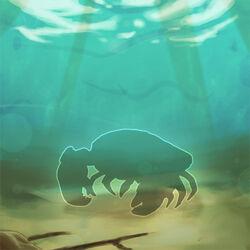 Soft-shelled-crab