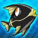Colly-bird revealed