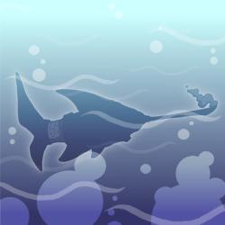 Needlenose-shark