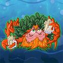 Clover-crab revealed