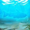 White-catfish