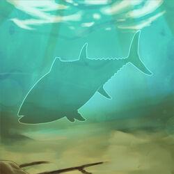 Itchy-tuna