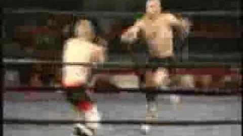 1 Second MMA Fight