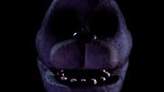 Bonnie Hallucination 2