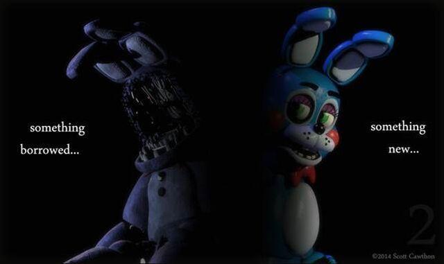 File:New bunny.jpg
