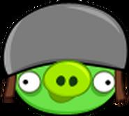 Old helmet pig