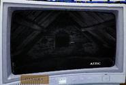 Attic Cam