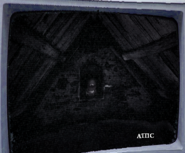 Luigistage1attic
