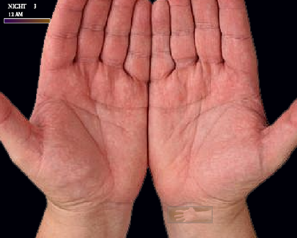 File:Hands.png