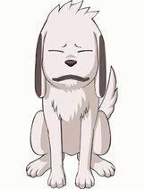 Puppy Akamaru