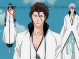 Aizen's Army