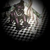 ShadowFreddyNavi
