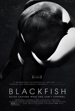 File:BLACKFISH Film Poster.jpg
