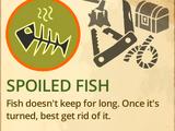 Spoiled Fish