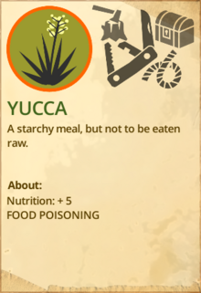 Yukka