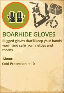 Boarhide gloves