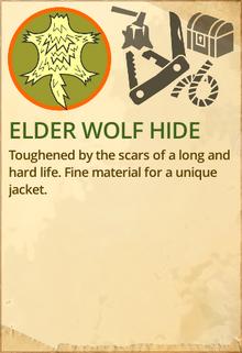 Elder wolf hide