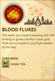 Blood Flukes-0