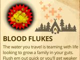 Blood Flukes