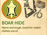 Boar Hide
