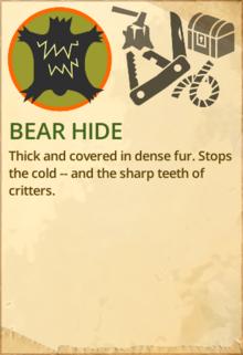 Bear hide