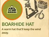 Boar Hide Hat