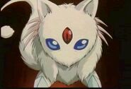Fujin's Spirit