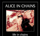 Life in Chains