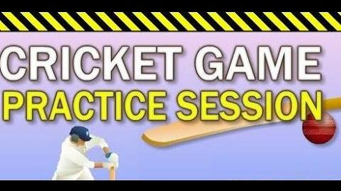World Cup Cricket Practice Session Flash Game