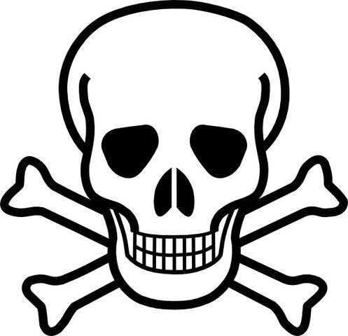 File:Skull and xbones.jpg