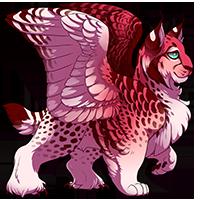 Teardrop Owlynx