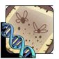 Firefly Gene
