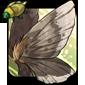 Fragile Moth Wings